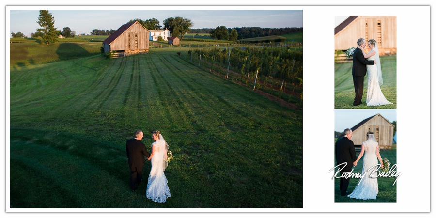 Early Mountain Vineyards Wedding Photographer Charlottesville Virginia Rodney Bailey VA Wedding Photography