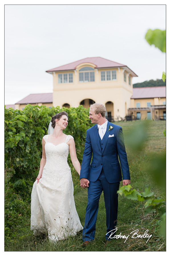 Northern Virginia Wedding Photographers Breaux Vineyards Winery Wedding VA