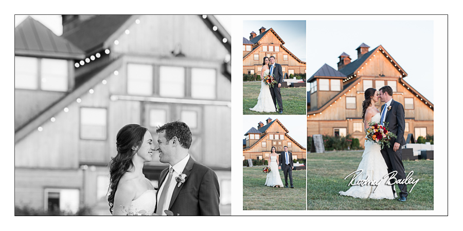 Stone Tower Winery Weddings Virginia Rodney Bailey wedding photographers VA