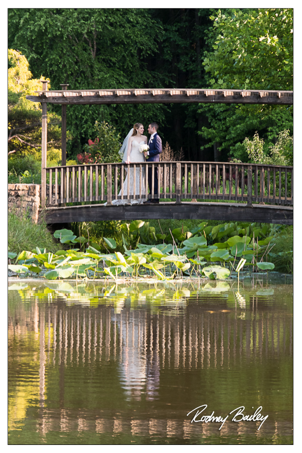 atrium at meadowlark gardens weddings vienna va wedding photographers rodney bailey photography