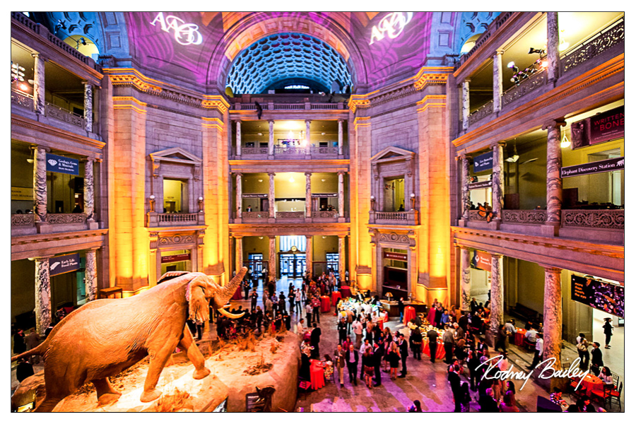 event photography washington dc rodney bailey event photographers DC VA MD smithsonian natural history museum events