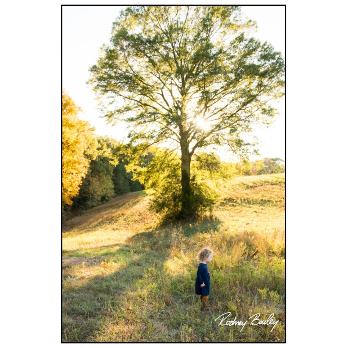Fall Time! | Family Session Photographers Northern Virginia